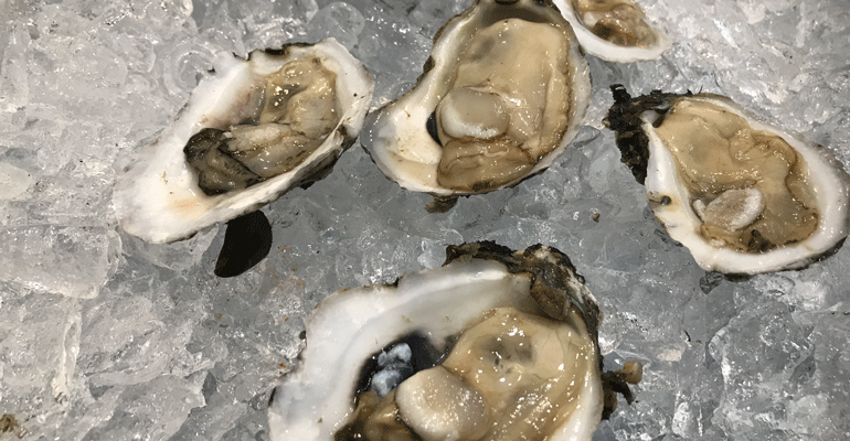 seafood-expo-Oysters_from_Crystal_Oysters-bret-thorn.png