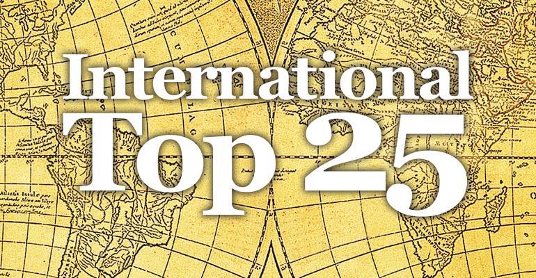 The 2017 International 25