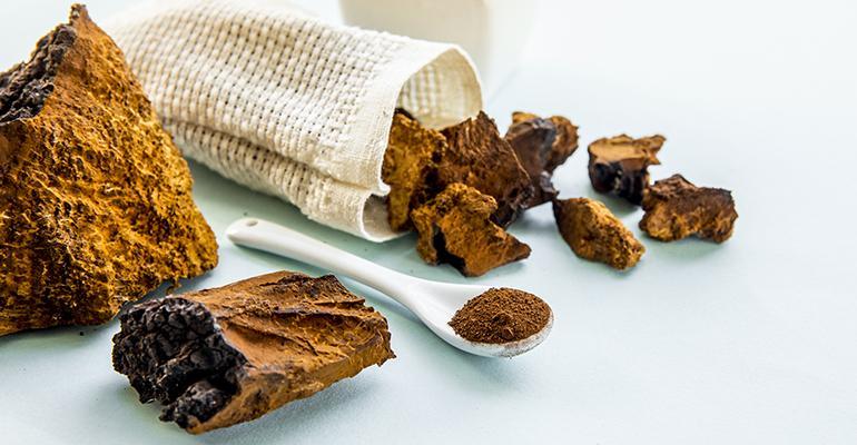 chaga-mushroom-flavor-of-the-week-sept-14.jpg