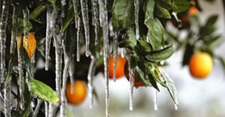Calif. freeze spells cold, hard reality of price hikes