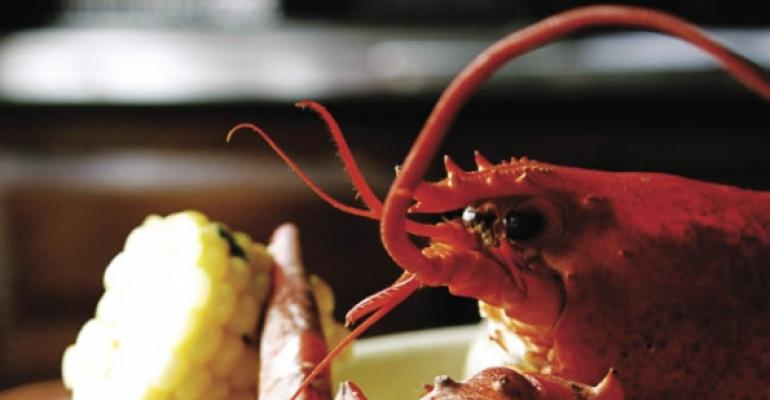 Lobster: An affordable delicacy