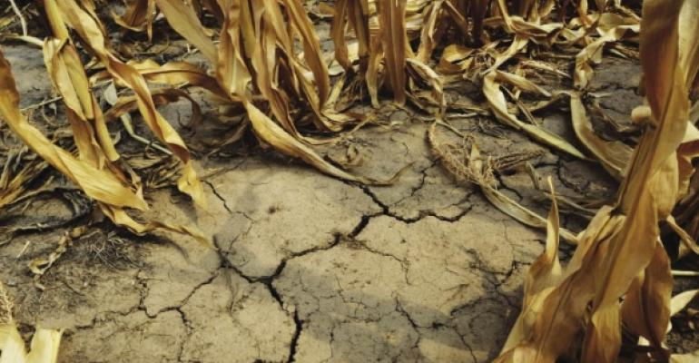 Top of mind: Crops in crisis