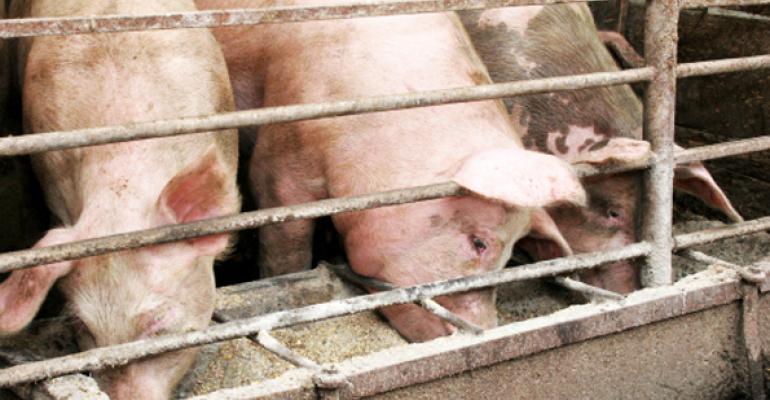 Keys to a more humane food supply