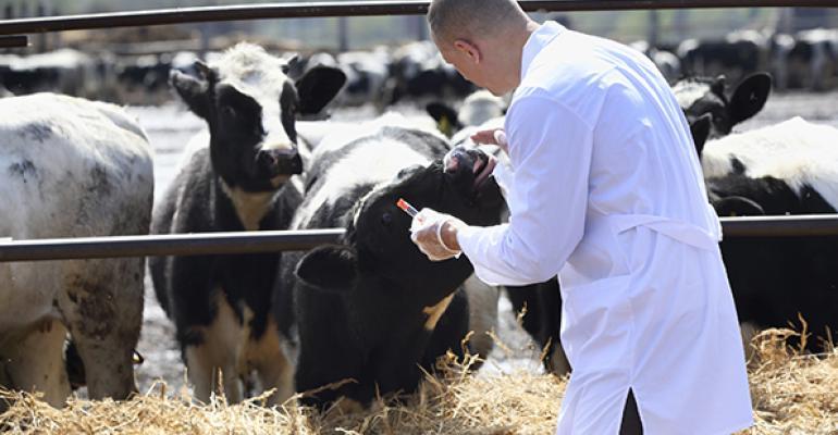 California poised to ban routine use of antibiotics in livestock
