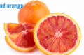 blood-orange-2-citrus.png
