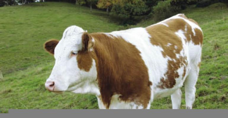 Tighter supplies to drive 2012 beef prices