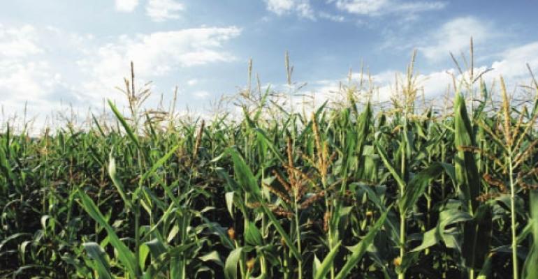 Gloomy economic news sinks commodity prices