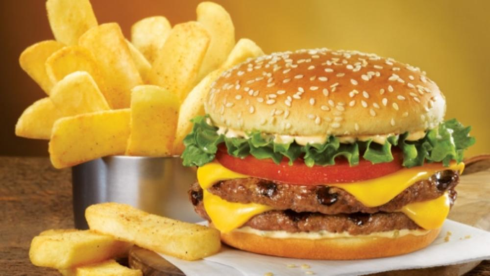 Red Robin Tavern Double and fries