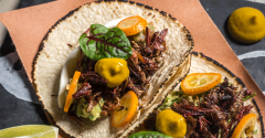 grasshopper tacos